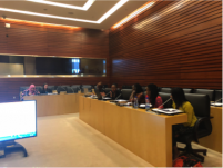 Young women issues, a priority for Africa's future