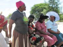 Fact Sheet Botswana:  Patterns and drivers of GBV