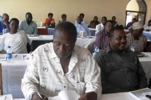 07891_participants_at_the_zvimba_coe_workshop.jpg