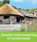 Click here for the Gender mainstreaming in government application form