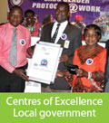 Click here for Centres of Excellence - local government application form