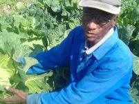 Climate Change, COVID- 19 double impact on farmers